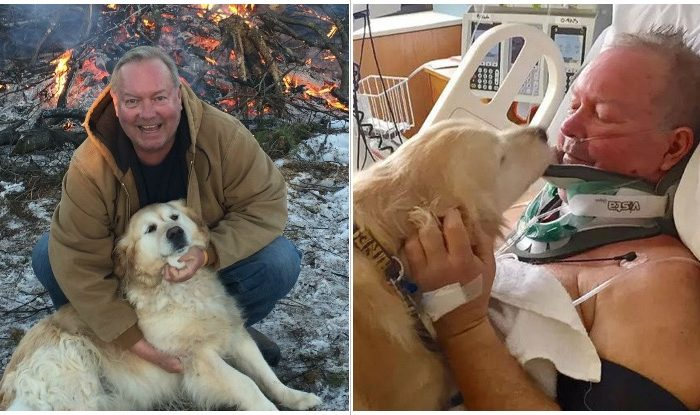 Golden retriever saved his owner's life after he broke his neck and almost froze to death